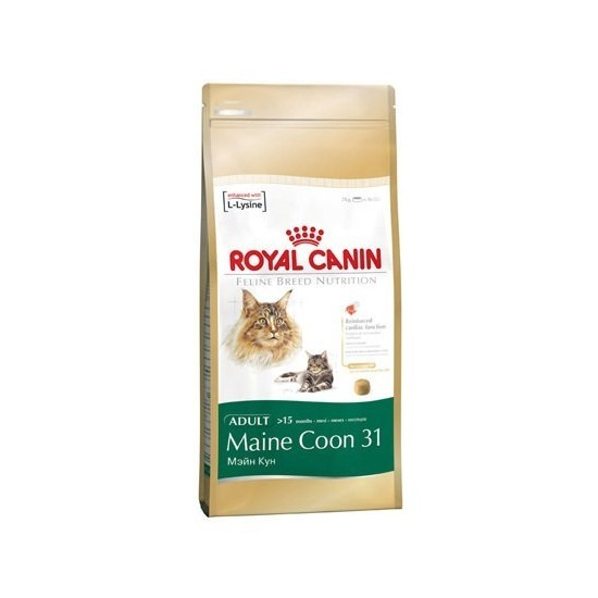 Royal Canin -Royal Canin Maine Coon -Pienso