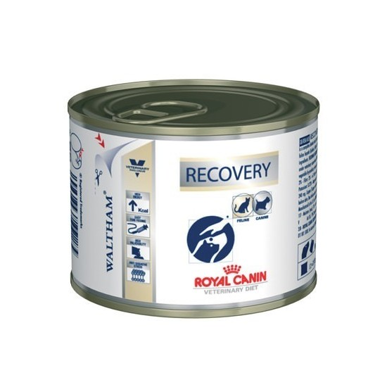 Royal Canin Veterinary Diet -Royal Canin Recovery -Comida húmeda